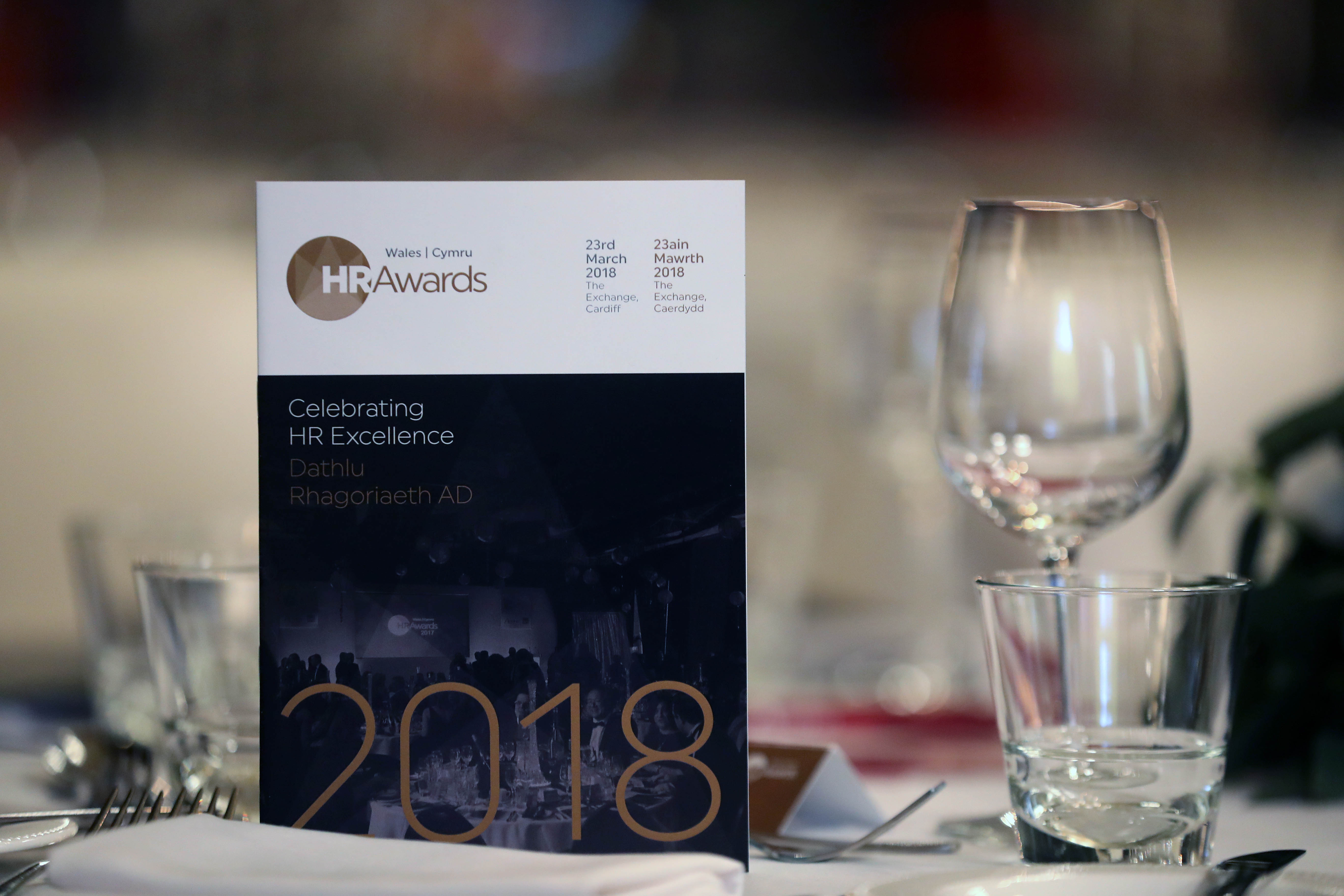 Cream of the crop crowned at 2018 Wales HR Awards (4).JPG